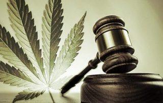 cannabis lawsuit