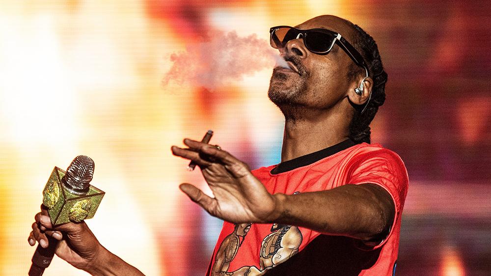 Snoop Dogg Casa Verde Capital