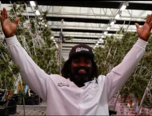 Celebrated NFL Running Back and Cannabis Advocate Ricky Williams Announced The Launch Of Highsman